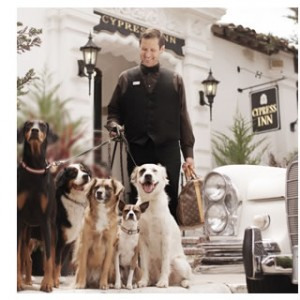 pet friendly carmel hotels and inn
